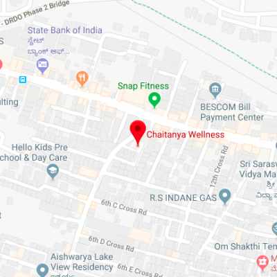 CV Raman Nagar Branch-map